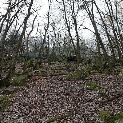 Foto: Aussichtspunkt Weissenfels (2)