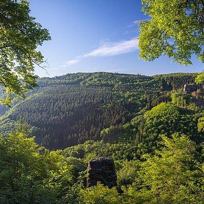 Foto: Aussicht auf dem Felsplateu Kastel-Staadt